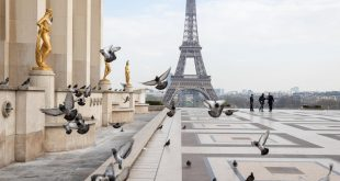 Paris is tourist's dreamland