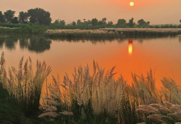 Sunset view on Ravi River